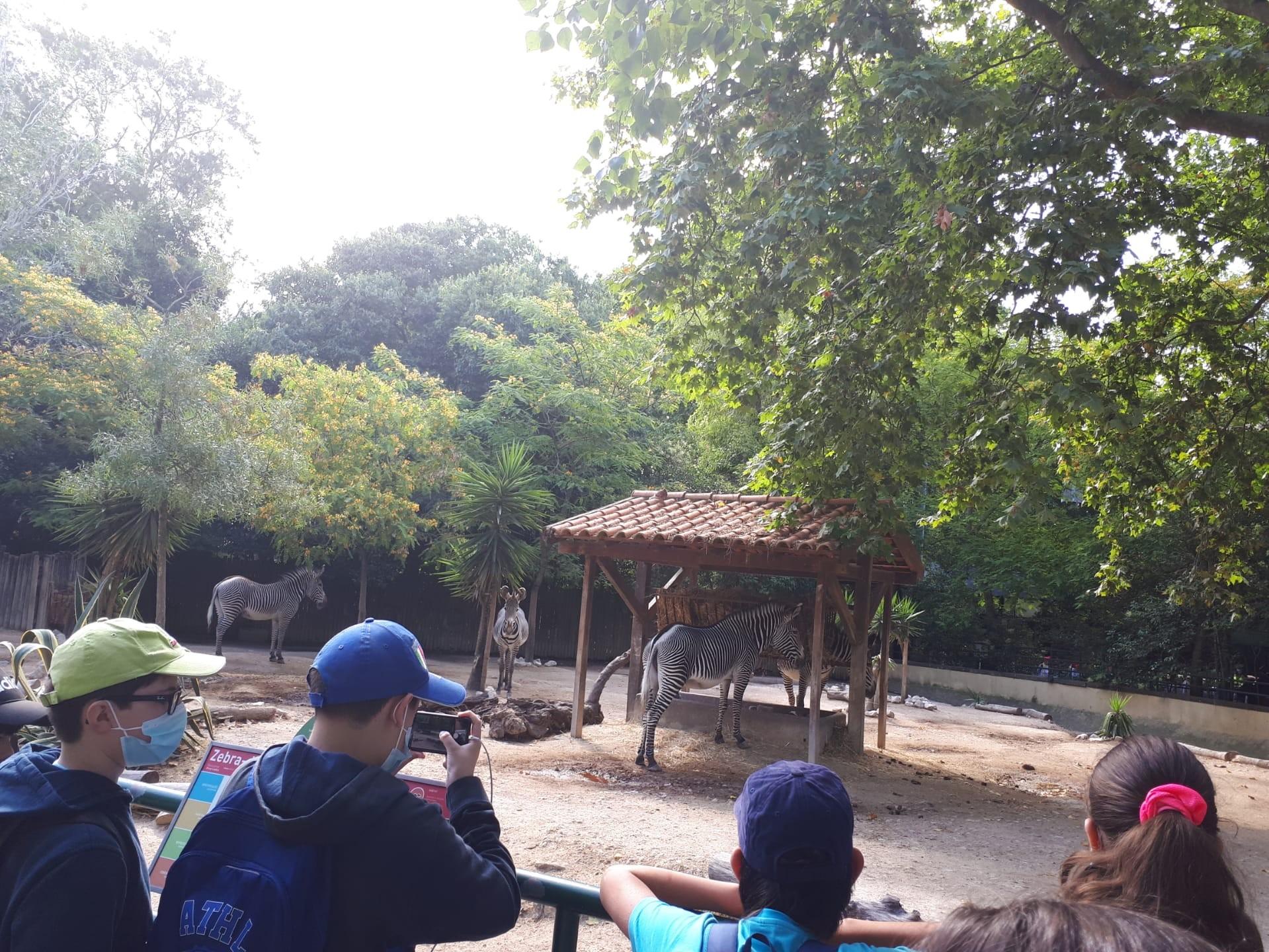 2021-06-22 – Visita ao Zoo (5.º ano)